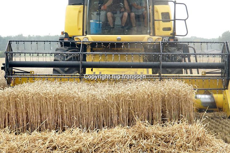 Nederland, Leur, 28-9-2019 Een veld met tarwe, graan wordt door een combine geoogst. Tarweveld, graanveld. Door het droge en warme weer wodrt de tarwe vroeg van het land gehaald en is minder groot . Foto: Flip Franssen