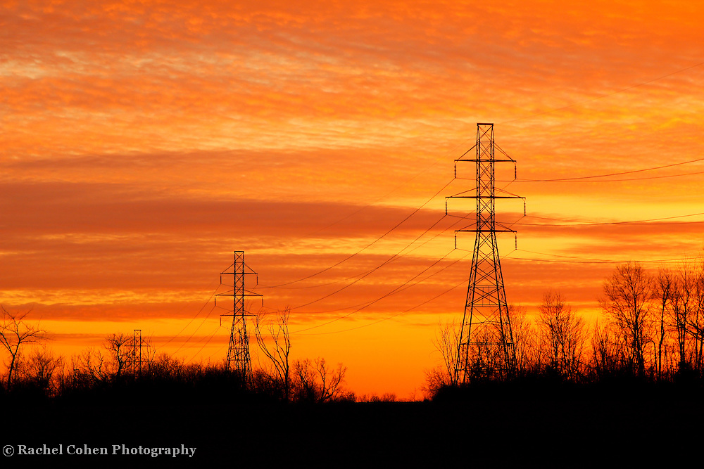 """""""Midwestern Sunset""""<br /> <br /> Vibrant yellow and orange Michigan sunset!<br /> <br /> Sunset Images by Rachel Cohen"""