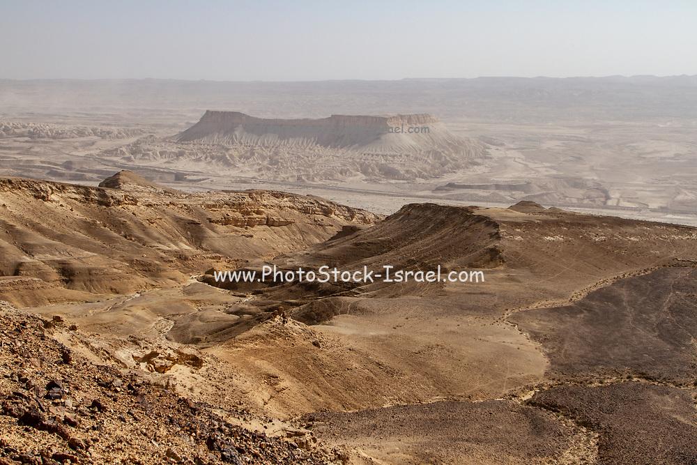 Desert landscape Mount Zin and Wadi Zin, Negev Desert, Israel