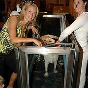 NLD/Amsterdam/20060716 - Opening Cesar Wellness Centre voor honden, Anouk Smulders - Voorveld en hond Sumo, aquajoggen voor honden