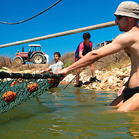 חקלאות ימית