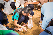 13 MAY 2013 - BANGKOK, THAILAND:   A woman sifts through the sand looking for rice seeds blessed by Brahmin priests at the Royal Ploughing Ceremony. After the ceremony, thousands of Thais, mostly family formers, rush onto the ploughed ground to gather up the blessed rice seeds sown by the Brahmin priests. The Royal Plowing Ceremony is held Thailand to mark the traditional beginning of the rice-growing season. The date is usually in May, but is determined by court astrologers and varies year to year. During the ceremony, two sacred oxen are hitched to a wooden plough and plough a small field on Sanam Luang (across from the Grand Palace), while rice seed is sown by court Brahmins. After the ploughing, the oxen are offered plates of food, including rice, corn, green beans, sesame, fresh-cut grass, water and rice whisky. Depending on what the oxen eat, court astrologers and Brahmins make a prediction on whether the coming growing season will be bountiful or not. The ceremony is rooted in Brahman belief, and is held to ensure a good harvest. A similar ceremony is held in Cambodia.  PHOTO BY JACK KURTZ