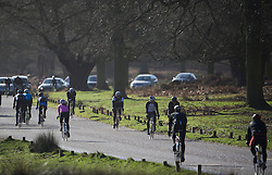 © London News Pictures. 22/02/2014. London, UK.  Cyclists riding through Richmond Park in West London at sunrise. The south of England is experiencing warm weather for the time of year and sunshine following weeks of rain and flooding.  Photo credit: Ben Cawthra/LNP
