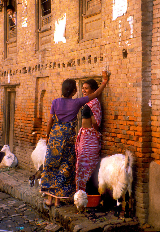 Young women chat on a street in the old city of Kathmandu amidst geese and goats, while a boy looks down from an open window
