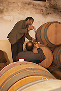 Juan Luis Bouza, owner, and Eduardo Boido, oenologist and winemaker, taking a barrel sample with a pipette in the barrel aging cellar. Bodega Bouza Winery, Canelones, Montevideo, Uruguay, South America