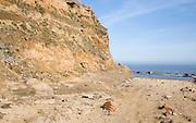 Soft crumbling cliffs at Happisburgh, Norfolk, England