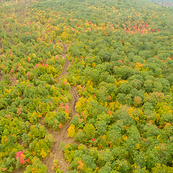 Drone view of  forest near Mount Eleanor and Birch Ridge in New Durham, New Hampshire.