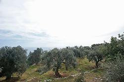 Salento, litoranea adriatica. Località Ciolo, frazione di Gagliano del Capo (Lecce)