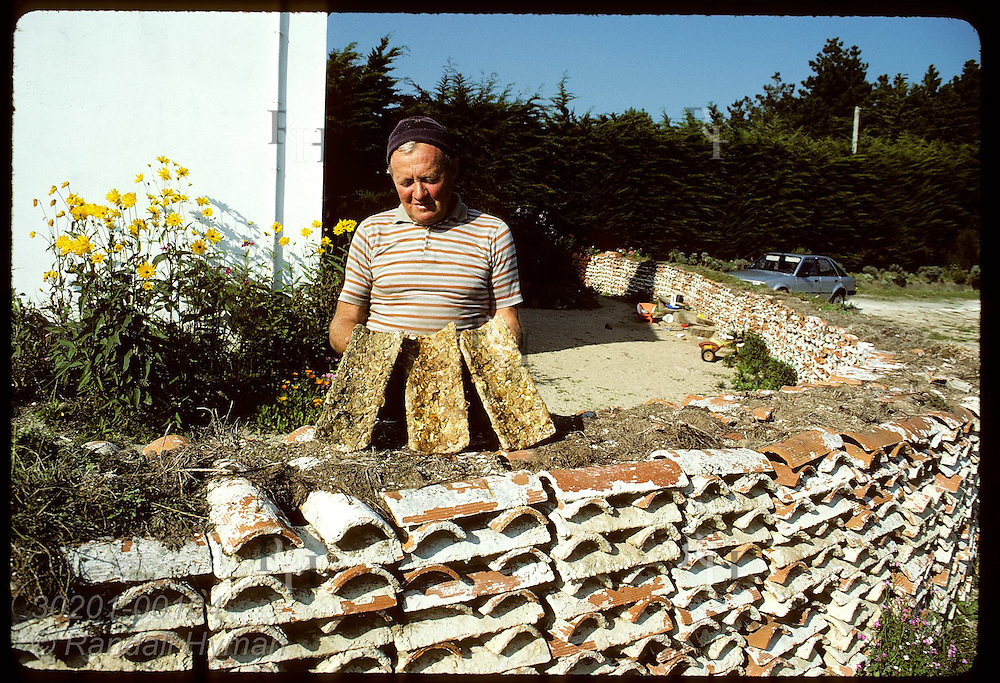 Tiles that once were vital hatcheries for Brittany's flat oysters decorate Joseph Camenen's yard. France