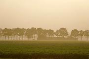 Nederland, Terborg, 11-11-2020 Landschap in de Achterhoek . Foto: ANP/ Hollandse Hoogte/ Flip Franssen