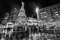 Christmas Tree, Westlake Center