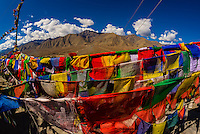 Prayer flags, Spituk Monastery, Leh, Ladakh, Jammu and Kashmir State, India.