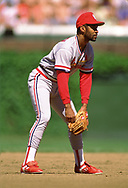 CHICAGO - 1990: Ozzie Smith of the St. Louis Cardinals fields during an MLB game versus the Chicago Cubs at Wrigley Field in Chicago, Illinois during the 1990 season. Smith played for the Cardinals from 1982-1996.  (Photo by Ron Vesely) Subject:   Ozzie Smith