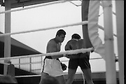 Ali vs Lewis Fight, Croke Park,Dublin..1972..19.07.1972..07.19.1972..19th July 1972..As part of his built up for a World Championship attempt against the current champion, 'Smokin' Joe Frazier,Muhammad Ali fought Al 'Blue' Lewis at Croke Park,Dublin,Ireland. Muhammad Ali won the fight with a TKO when the fight was stopped in the eleventh round...Image of Ali carrying the fight to Lewis.