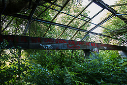 Sipson, UK. 5th June, 2018. An overgrown structure at Grow Heathrow. Grow Heathrow is a squatted off-grid eco-community garden founded in 2010 on a previously derelict site close to Heathrow airport to rally support against government plans for a third runway and it has since made a significant educational and spiritual contribution to life in the Heathrow villages, which remain threatened by Heathrow airport expansion.