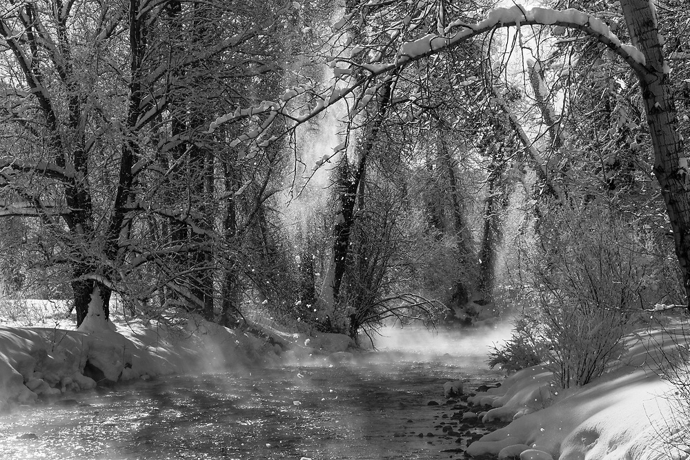 Warms Spring Creek after a heavy snowfall shows misty warming and falling snow from surrounding Cottonwood Trees in Ketchum, Idaho. Open Edition Prints and Licensing.