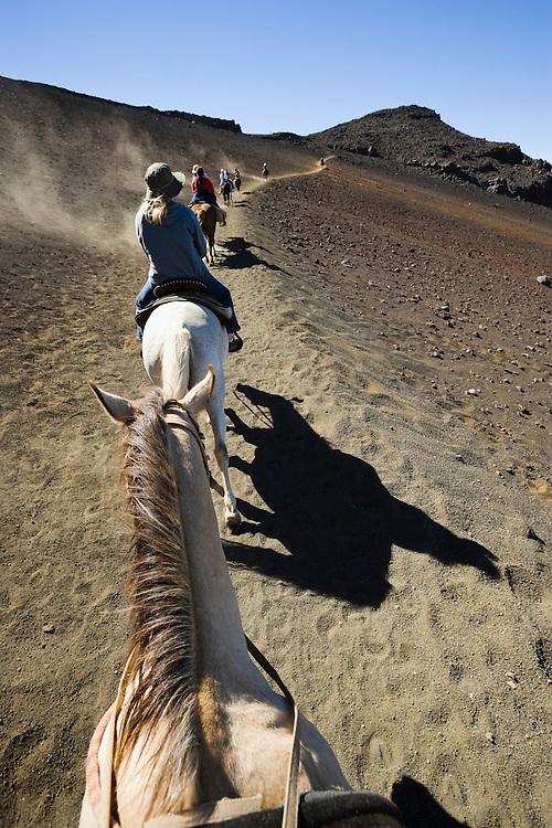 Line of horses and riders heading up a trail in Haleakala Crater, Haleakala National Park, Maui, Hawaii, USA