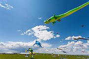 Aligator and frog kites of Bernhard Dingwerth from Kassel, Germany. Windscape Kite Festival, Swift Current, Saskatchewan.