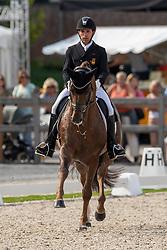 Jurado Lopez Severo, ESP, D'Avie<br /> World Championship Young Dressage Horses - Ermelo 2019<br /> © Hippo Foto - Dirk Caremans<br /> Jurado Lopez Severo, ESP, D'Avie