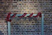 Post-Christmas tinsel wrapped around a rail, on 2nd January 2017, at a lock on Regent's Canal, central London, England.