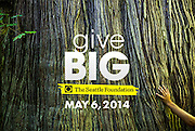 The Seattle Foundation: Give Big (6 May 2014)