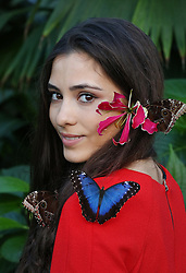 © Licensed to London News Pictures. 15/01/2016. Wisley, UK. Model Georgina Alexi wears a hat made from tropical flowers as butterflies land on her at the launch of 'Butterflies in the Glasshouse' at RHS Gardens Wisley. Hundreds of butterflies are released into the warm surroundings of glasshouse in this annual event. Forty different species will flit and feed among the tree ferns, palms, creepers and flowers from January 16 to March 6, 2016.    Photo credit: Peter Macdiarmid/LNP