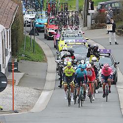 04-04-2021: Wielrennen: Ronde van Vlaanderen (Mannen): Oudenaarde<br />Kopgroep van de dag