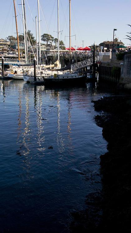 Santa Cruz Harbor 3881