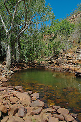 Paperbarks line a shady waterhole at Sampson Inlet in Camden Sound.  Freshwater often flows all year into rockpools such as this.