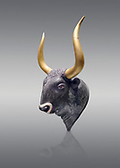 Minoan  bulss head shaped rhython with go;d horns, from the  Knossos-Little Palace 1600-1450 BC, Heraklion Archaeological  Museum, grey background.<br /> <br /> There is a hole on the bulls neck for filling the hollow head and a hoile in its snout for pouring. .<br /> <br /> If you prefer to buy from our ALAMY PHOTO LIBRARY  Collection visit : https://www.alamy.com/portfolio/paul-williams-funkystock/minoan-art-artefacts.html . Type -   Heraklion   - into the LOWER SEARCH WITHIN GALLERY box. Refine search by adding background colour, place, museum etc<br /> <br /> Visit our MINOAN ART PHOTO COLLECTIONS for more photos to download  as wall art prints https://funkystock.photoshelter.com/gallery-collection/Ancient-Minoans-Art-Artefacts-Antiquities-Historic-Places-Pictures-Images-of/C0000ricT2SU_M9w