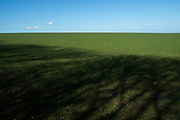 Green field landscape Isle of Wight, UK. (photo by Mike Kemp/In Pictures via Getty Images)