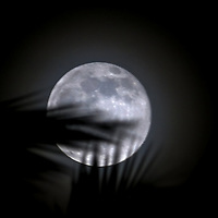 The Moon Please select Shopping Cart Below to Purchase prints and gallery-wrapped canvases, magnets, t-shirts and other accessories
