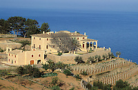 Banyalbufan - Majorque island -Baleares -Spain