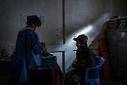 """Joselyn García Alameda, enfermera de la ONG """"Médicos sin Fronteras"""", atiende a Ramón en una clínica abandonada del municipio Petatlán. En ésta localidad, la última enfermera con la que contaban partió hace dos años debido a la violencia provocada por grupos armados que han surgido en la región, un problema que enfrentan diversas comunidades del estado. Esto ha dejado a cientos de familias sin accesos a servicios de salud, por lo que """"Médicos sin Fronteras"""" desarrolló desde hace tres años el proyecto """"Guerrero"""", el cual consiste en llevar atención médica y psicológica a quienes lo necesiten; su labor no se detuvo con la pandemia, extremando precauciones para cuidar de sí mismos y a la población."""