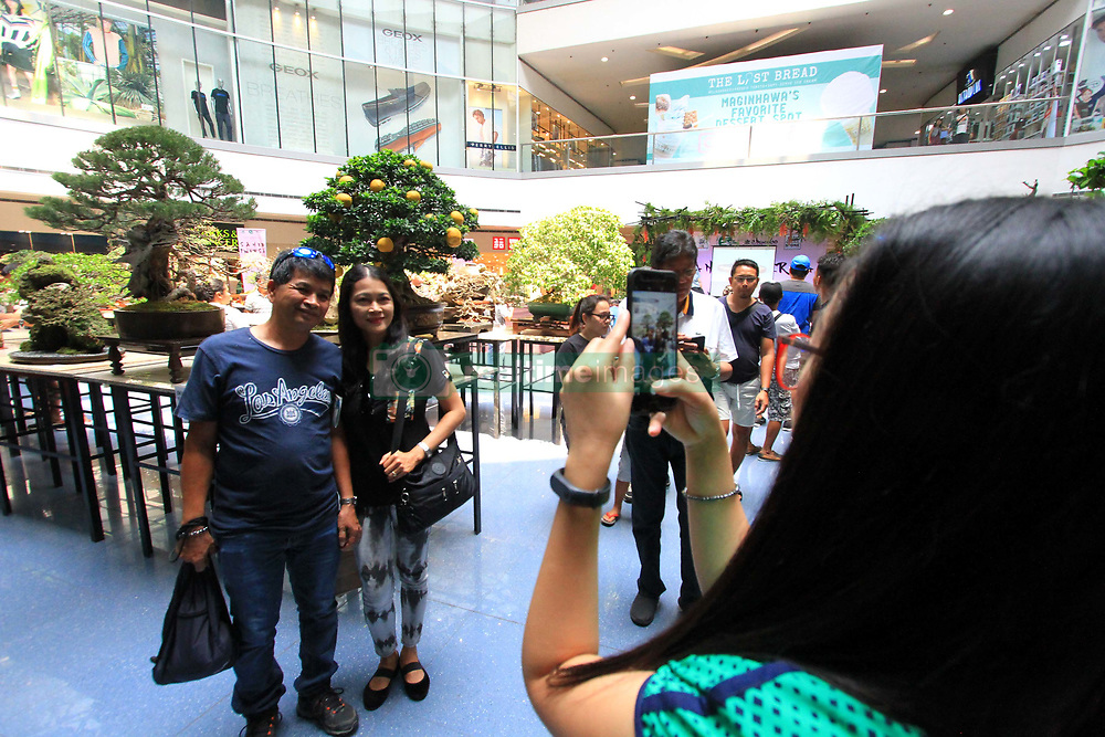 """March 23, 2019 - Philippines - Mall goer's amazed on bonsai tree and enjoyed taking pictures on exhibit during the Philippine Bonsai Society at The Block of SM North in Quezon City on March 23, 2019. The Annual National Show of Philippine Bonsai Society with the title """"Sanib Pwersa"""" Art in Nature, has more than 200 entries of bonsai trees and suiseki stone collection that was finely selected from the various part of the country, the exhibition will run from March 22-25, 2019. (Credit Image: © Gregorio B. Dantes Jr/Pacific Press via ZUMA Wire)"""
