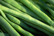 Close up selective focus photograph of a group of French beans