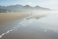 Adult silhouette explores the foggy shoreline of Cannon Beach, Oregon.