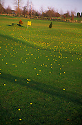 A5EXG0 Yellow golf balls on American practice golf driving range with 200 metre distance marker