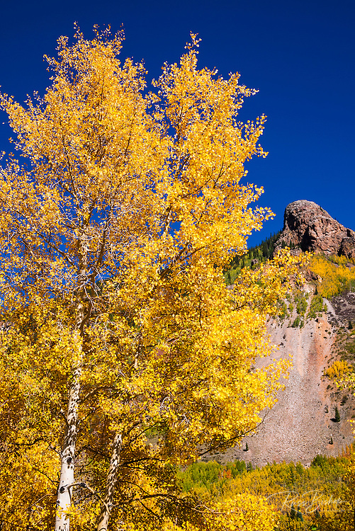 Fall color along the Million Dollar Highway near Silverton, San Juan National Forest, Colorado USA