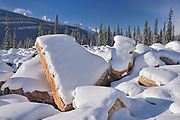 Quartzite boulders along the Icefields Parkway. Canadian Rocky Mountains , Jasper National Park, Alberta, Canada