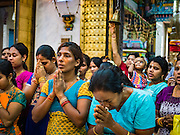 """22 OCTOBER 2015 - YANGON, MYANMAR: Hindus pray in Sri Kali temple in Yangon to honor the goddess Durga on the last day of Navratri. Navratri, literally """"nine nights"""" is a Hindu festival devoted to the Goddess Durga. Navratri festival combines ritualistic puja (prayer) and fasting. Navratri in India follows the lunar calendar and is celebrated in September/October as Sharad Navratri. It's widely celebrated in countries in Southeast Asia that have large Hindu communities, including Myanmar (Burma). Many of Myanmar's Hindus are descendants of Indian civil servants and laborers who came to Myanmar when it was the British colony of Burma.  PHOTO BY JACK KURTZ"""