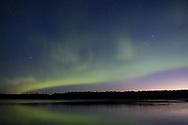 The Aurora Borealis at sunrise over Bartlett Cove in Alaska
