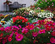 Beautiful garden in yard of the historic Skagway Inn Bed & Breakfast located in the Historic District of Klondike Gold Rush National Historical Park, Skagway, Alaska.