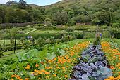 Kylemore Abbey & Victorian Walled Garden, Connemara, West of Ireland