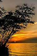 The sun sets over the Gulf of Mexico behind a mangrove at Rabbit Key in the Everglades as storm clouds approach.