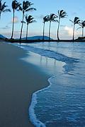 Beach foam and palm trees, Kahala, Oahu, Hawaii