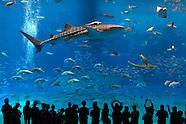 FEATURE: Super Aquariums