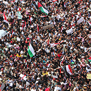 Among the multitudes, many also carry Palestinian flags during the Day of Justice and Cleansing protests in Cairo's Tahrir Square.