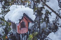 THEMENBILD - frischer Neuschnee auf einem frei hängenden Vogelhaus, aufgenommen am 13. November 2019, Piesendorf, Österreich // fresh fresh snow on a free-hanging birdhouse on 2019/11/13, Piesendorf, Austria. EXPA Pictures © 2019, PhotoCredit: EXPA/ Stefanie Oberhauser