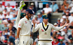 Australia's Steve Smith and Tim Paine appeals after England's Alastair Cook was struck on the pads by Nathan Lyon during day four of the Ashes Test match at the Adelaide Oval, Adelaide.